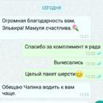 whatsapp image 2019 08 06 at 14.35.22 e1566218191183 150x150 - Груминг салон в Москве - район Перово
