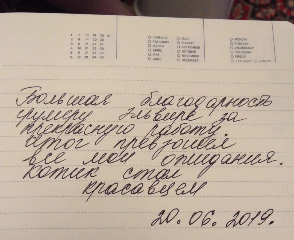 whatsapp image 2019 08 07 at 21.06.58 e1566214479964 - Груминг салон в Москве - район Перово